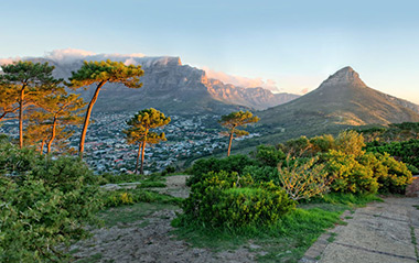 Table Mountain and Signal Hill Tour