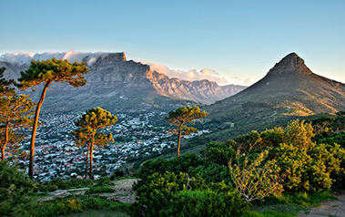 Table Mountain in Cape Town Tours