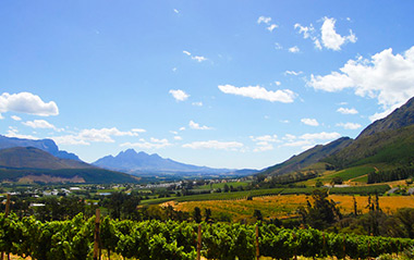 Winelands Tour with great Views